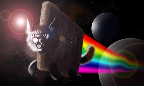 Memes Wallpapers For Chromebook neon cat hd mememagnetic