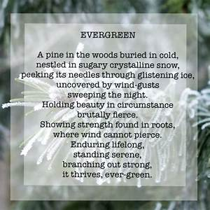 Spiritual, Poems, Evergreen, Du, Poetry