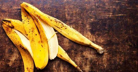 banana peels garden uses peel plantcaretoday plants fertilizer gardening water growing compost tips