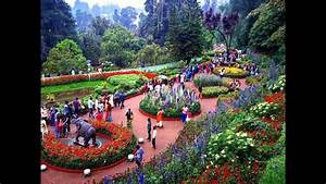 A visit to the Ooty Botanical Garden, Tamil Nadu, India ...