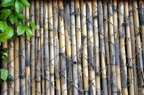 Free Bamboo Curtain Stock Photo How To Make 84 Curtains Longer Sheer With Grommets Burgundy Panel White Wood Curtain Rods And Finials Dollar Blinds Canberra Red Black Silver Shower Hamilton Nz Primitive Star Hooks