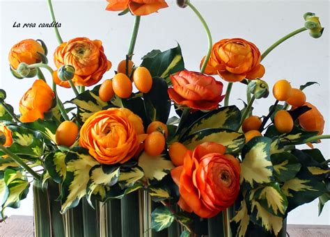 foto fiori bellissimi foto di mazzi di fiori bellissimi