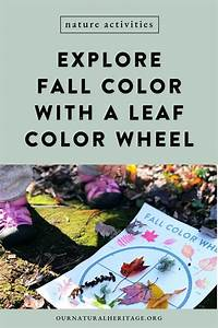 Kids Fall Activities  Leaf Color Wheel  With Images