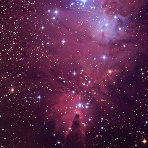 the cone nebula and the christmas tree cluster sky telescope