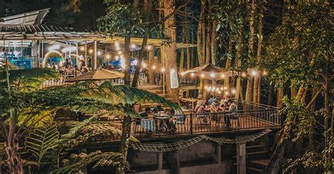 tempat ngopi hits  bogor  tengah hutan pinus kopi daong