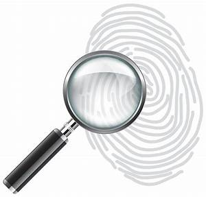 magnifying glass clipart no background - Clipground