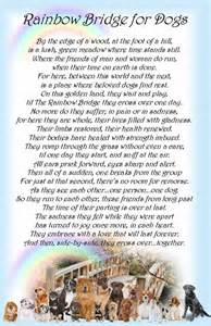 the rainbow bridge poem for cats rainbow bridge pet poem printable search