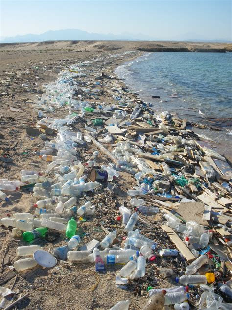 Plastic Bottles Ocean Pollution