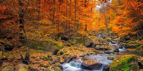 places   fall foliage