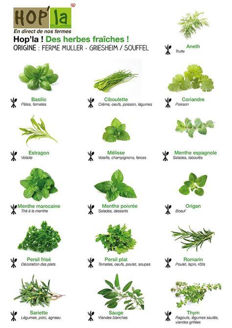 les sauces en cuisine les 25 meilleures idées concernant herbes aromatiques sur