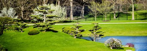 Garden Grove Ca Log by Local Parks In Garden Grove Ca