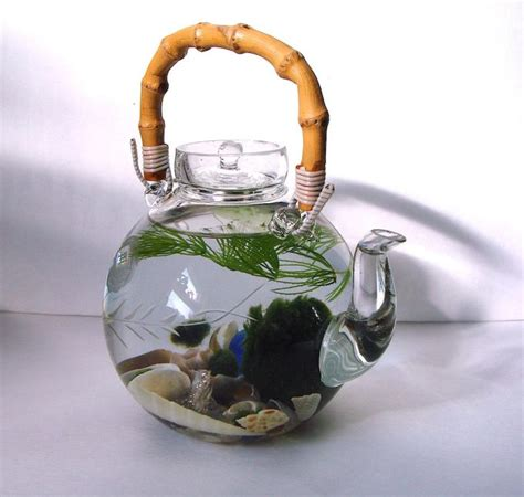 Aquarium air laut atau aquarium air tawar adalah salah satu hiasan yang di dalam rumah untuk siapa sih yang tak kenal dengan cara membuat aquarium unik, pasti di kalangan masyarakat sudah. 14 Desain Aquarium Unik dan Cara Membuatnya - inReview.id