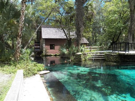 springs in florida with cabins ocala national forest juniper springs find cgrounds
