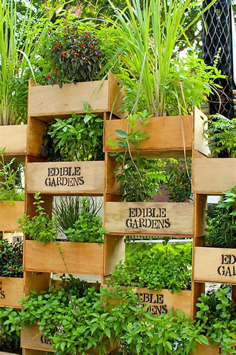 Used In Vertical Gardens by 22 Awesome Diy Vertical Garden Ideas That Will Refresh