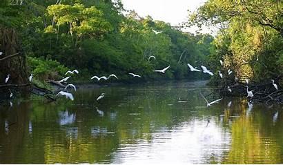 River Natural Wonder Longest Flows