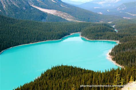turquoise area peyto lake i banff national park ab pharmacist on the rocks