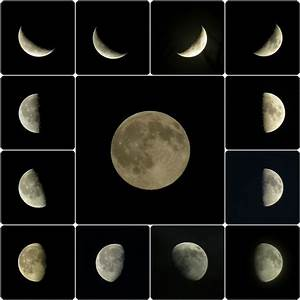 Investigate Phases of the Moon: Science Activity for ...