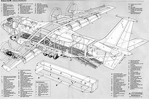 Airplane Scale Modelkit  Antonov An