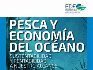 Pesca y Economía del Océano: Sustentabilidad y ...
