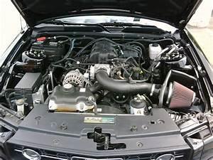 2008 Mustang V6 4 0l Black     Whats Next