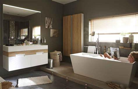 modele chambre parentale dans une suite parentale une salle de bains tout confort