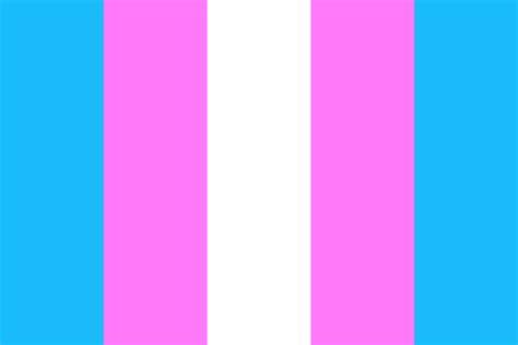 trans flag colors trans flag color palette
