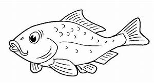 Fish Pictures To Color pictures of fish to color