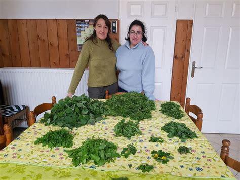 cuisiner les plantes sauvages plantes sauvages comestibles les reconnaître et les