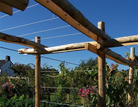 Rankhilfe Hauswand by Rankhilfen Kletterpflanzen Und Rankhilfen Aus Holz Oder