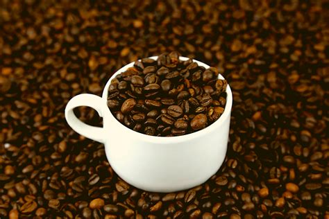 Where do all the calories of the coffee beans go when they turn into black coffee? How Many Calories Are In a Cup of Coffee? - Best Decaf Coffee
