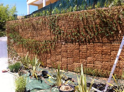 comment on plante kit mur v 233 g 233 tal