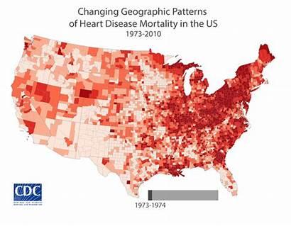 Disease Heart Cdc Rates Deaths Death American