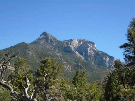 Mt. Charleston, from Lee Canyon Rd 45 Miles or so from Las ...