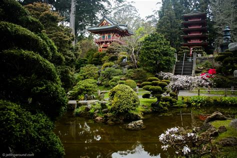 tea san garden francisco japanese rebecca tip wallpapers