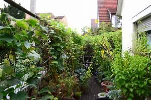 Garten Im September : der yok garten im august und september ye olde kitchen food und gartenblog ~ Whattoseeinmadrid.com Haus und Dekorationen