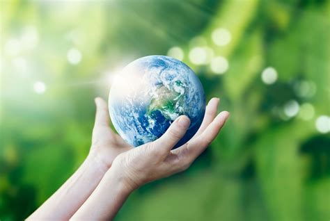 Four Eco-friendly Things You Can Do On Earth Day And Every