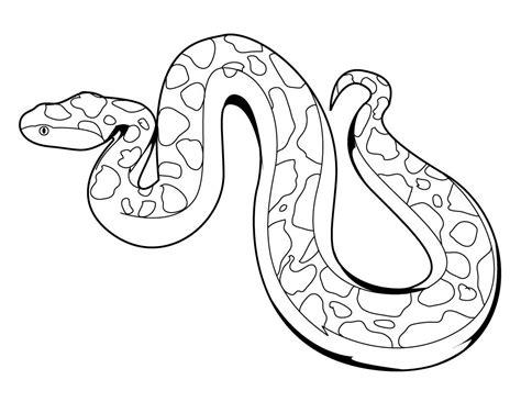 king cobra snake coloring pages   print
