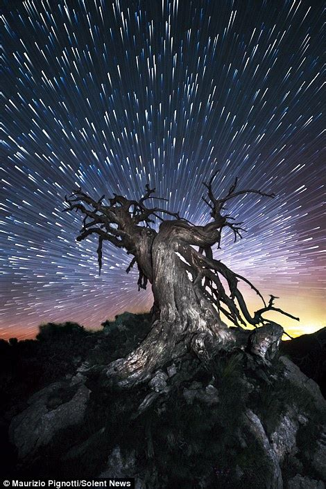 Thats Streaking Amazing Star Trails And The Milky Way