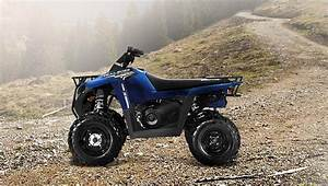 Polaris Trail Boss 330 Specs - 2012  2013