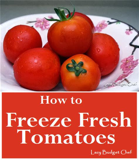 can you freeze tomatoes lazy budget chef how to freeze tomatoes