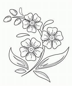 Beautiful Flowers Drawings For Kids - Great Drawing