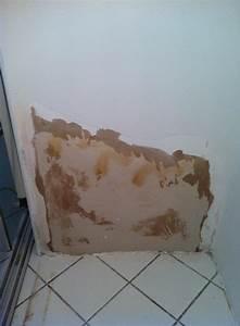 Décoller Papier Peint Sur Placo : propl me de d collement de la couvhe carton sur plaque de ~ Dailycaller-alerts.com Idées de Décoration