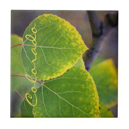 colorado gold tipped aspen leaves ceramic tile autumn