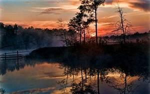 Sunrise, Mist, Trees, Swamp, Reflection, Nature, Landscape, Florida, Sky, Clouds, Water