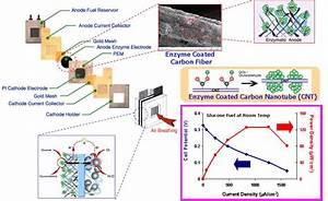 Nanobiocatalysis For Biofuel Cells