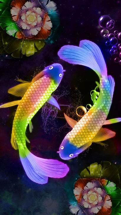 Fish Koi Luck Japanese Lucky Wallpapers Mobile
