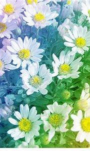 Rainbow Daisies Wallpaper by SyeraMiktayee on deviantART ...