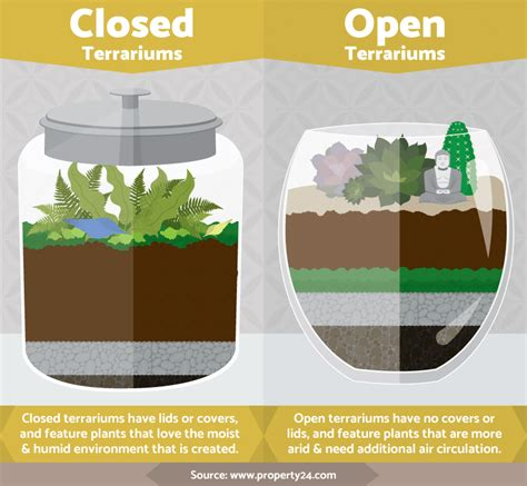 what you need for a terrarium diy terrariums an illustrated guide the snap mom