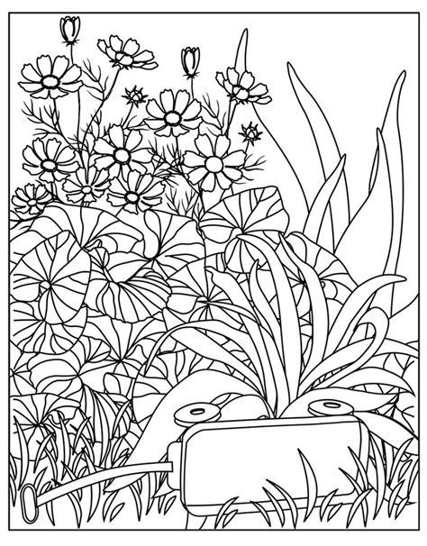 Zen Garden Coloring Pages