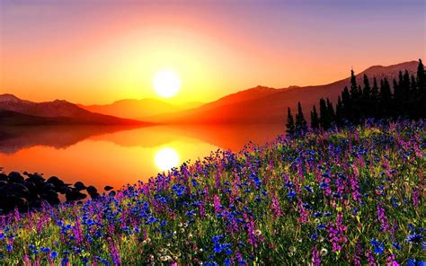 Bright Rays Sky River Sunny Sunrise Water Prange Colorful
